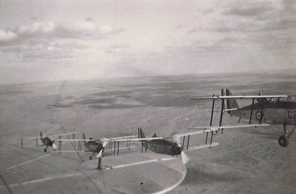 Westland Wapitis in formation